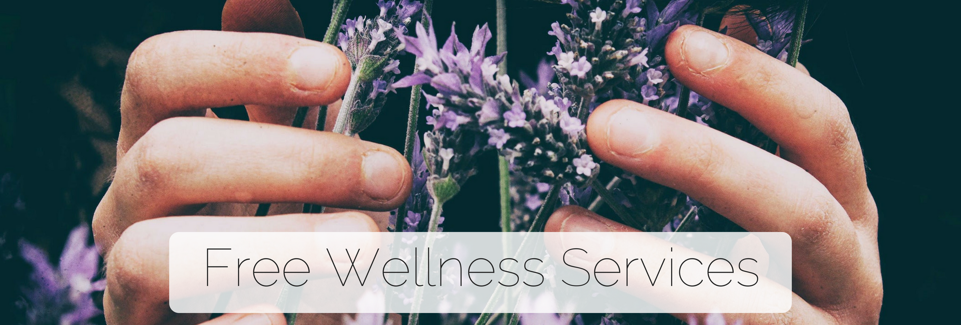 Free Wellness Services
